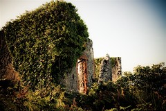 Naturaren Indarra (Igorza76) Tags: naturaleza abandoned casa huts alfa bizkaia euskalherria euskadi basquecountry mundaka bermeo caserio abandonado fuerza baserri urdaibai etxe bermio indarra mundeka hustunatura