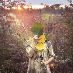 All The Trees Will Clap Their Hands (Raemarshall) Tags: autumn orange green fall beautiful leaves yellow forest sunrise faceless delicate raemarshall
