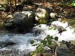 Sugar Hollow Low Falls