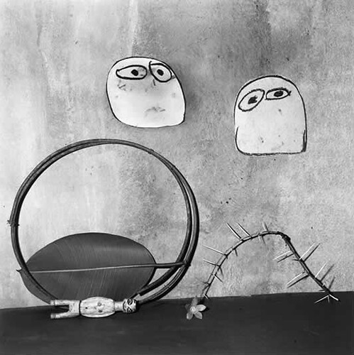 Roger Ballen, Shadow Chamber, Ambivalence, 2003