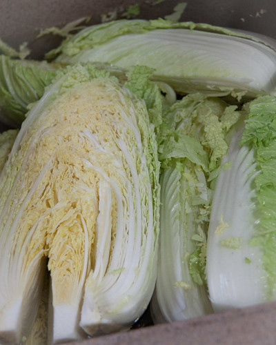 How to make KimChi / 김치 ? - Spicy fermented cabbage and radish
