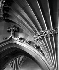 Gothic (perseverando) Tags: blackandwhite architecture library gothic victorian neogothic johnrylands fanvaults perseverando