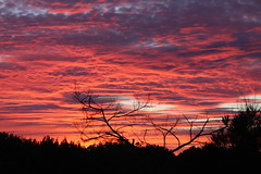 Sunset 4-11-11