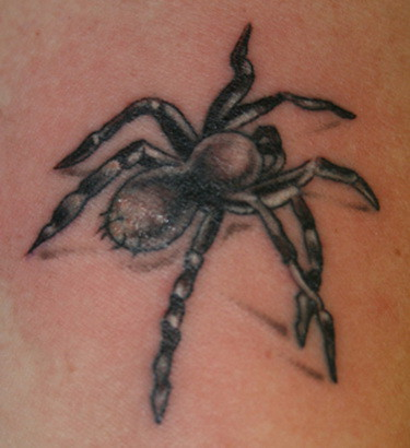 Spider Tattoos For Men