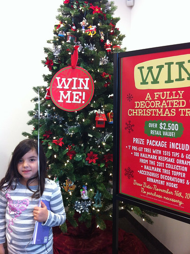 Win a Christmas Tree