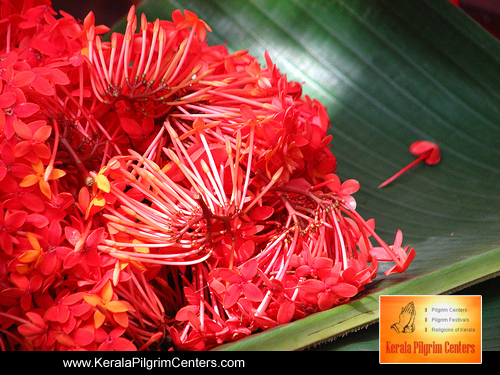 What is the importance of offering flowers in puja ?