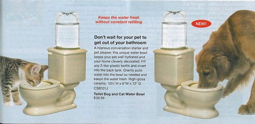 Pet Drinking Toilet