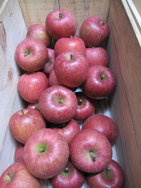choicest Fuji apples