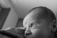 20111008_3476 (Ranapics) Tags: bw baby blackwhite noiretblanc nb newborn bb nouveaun