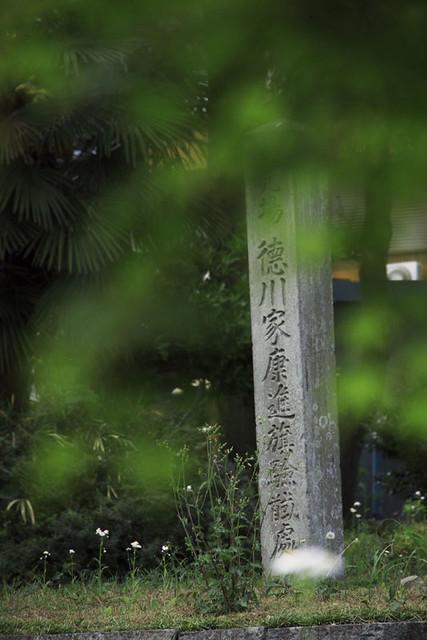110521_130245_関ヶ原_徳川家康最後の陣地跡
