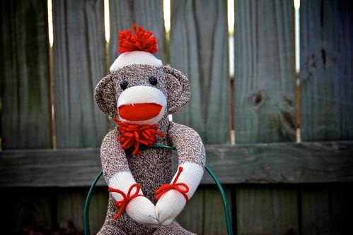 Day 317:  Monkey Business