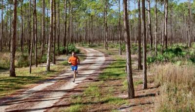 Srovnejte si své nejlepší časy na tratích 5 km, 10 km, půlmaraton a maraton