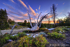 (James Neeley) Tags: california sunrise landscape mammothlakes hdr mammothmountain 5xp minaretsummit jamesneeley flickr23