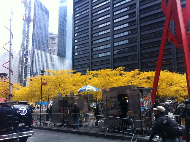 Walk Downtown - The Clearing of Zuccotti Park