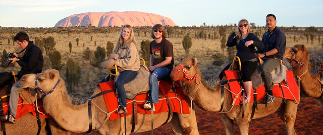 Camel Ride near Uluru/Ayers Rock