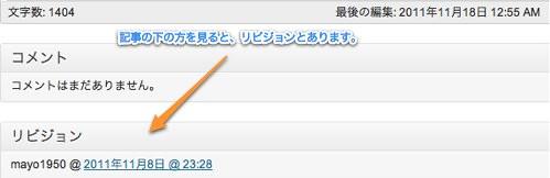 投稿編集 ‹ iPhoneとマヨテキメモ — WordPress-1