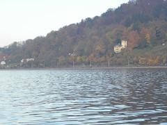 November 2011 (sarahamina) Tags: blue water austria sterreich agua aqua eau wasser bregenz bleu blau bodensee neela pani autriche nila vorarlberg lakeconstance azl bl sarahamina