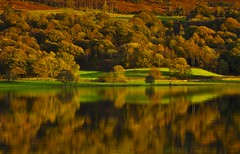 Light on Coniston Shore (Explored) (Steve Thompson images) Tags: autumn trees lake reflection water landscape lakedistrict cumbria coniston thelakes canon70200l conistonwater polarisingfilter torver 5dmark2