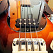 Music Man StingRay fretless bass
