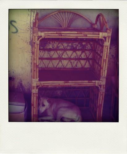 Tempat tidur baru :)