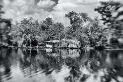 Time and Tide (181) (frank3.0) Tags: aperture louisiana bayou cypresstrees blacklake blindriver maurepas saintjamesparish livingstonparish canon5dmkii lensbabycomposer abandonedfishingcamp