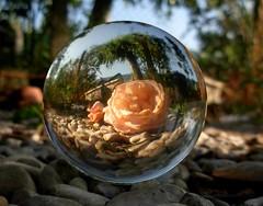 crystal ball photograp