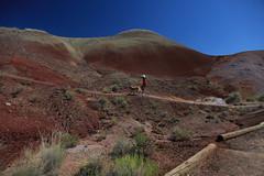 Painted Hills, Oregon (bhanuk2009) Tags: paintedhills johndayfossilbedsnationalmonument