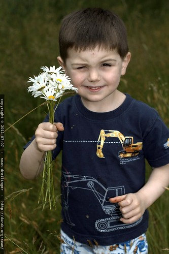 long stem daisy bouquet for rachel - MG 5178.JPG
