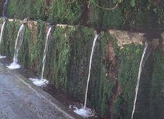 μαινιτες-βρύσες