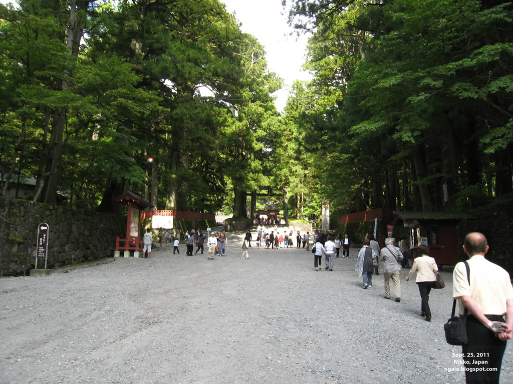 Path Leading to Toshogu Shrine