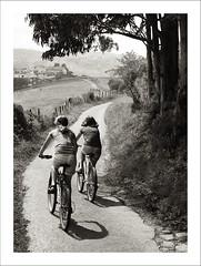 Vidas paralelas (aerferaer) Tags: trees girls fence lights luces spain arboles shadows path meadows asturias bicycles textures nias sombras contrasts bicicletas texturas sendero valla contrastes ribadesella prados nikond700 zeissdistagont35mmf2zf2 1107135954nef