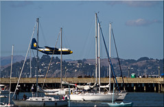 Fat Albert (Jill Clardy) Tags: blue sky bay us san francisco day fat albert transport clear angels 100views week marines fleet c130 npw 2011 6557