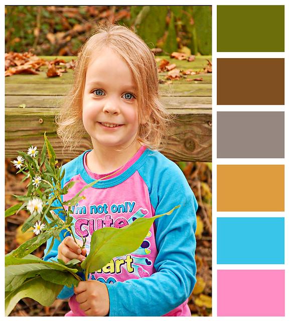 Leaves6 edit-color bar