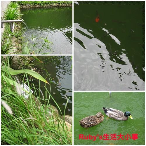 2011山陽國小 (3)