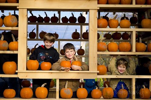 302:365 The boys in the Pumpkin House