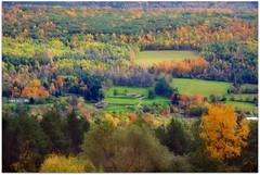 Autumn Landscape (blmiers2) Tags: autumn trees orange newyork tree green fall nature colors yellow landscape nikon october colorful 2011 d3100 blm18 blmiers2