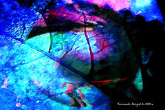 SIDERAL (ojoadicto) Tags: abstract color saturated digitalmanipulation richcolors blinkagain artisticphothography
