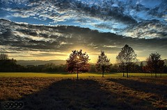 Autumnal Sunset (fs999) Tags: auto road blue trees light sunset shadow sky clouds landscape paintshop soleil back sonnenuntergang pentax strasse wide coucher himmel wolken ombre iso bleu route ciel arbres paintshoppro 20mm blau luxembourg nuages paysage landschaft bäume schatten ontheroad luxemburg contrejour k5 highiso gegenlicht corel aficionados pentaxist soligor 100iso artcafe ontheroadagain surlaroute vob lëtzebuerg youmademyday qualityhdr pentaxian newk elitephotography ashotadayorso justpentax topqualityimage wideauto zinzins flickrlovers topqualityimageonly fs999 pentaxart hairygitselite pentaxk5 newk5 soligorcdwideauto20mmf28 soligor20 paintshopprox4ultimate x4ultimate