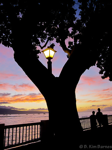 Evening in Lahaina by kimbar