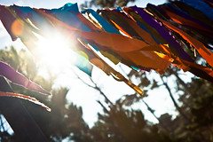Banner Flare of Beauty (soupatraveler) Tags: trees sky sun colors happy colorful banner silo fabric flare sunflare flarefriday campshuttersisters campsisters
