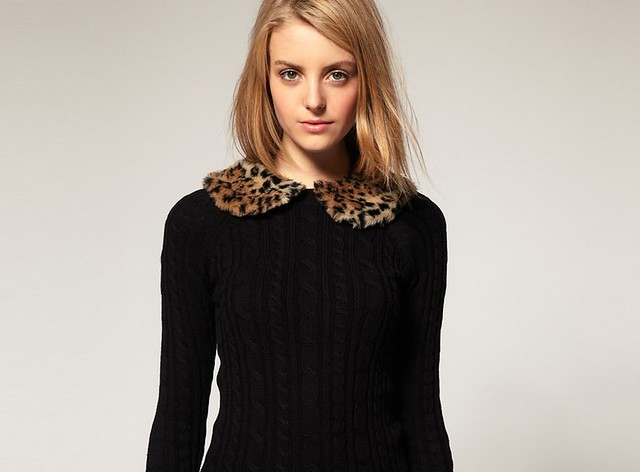 detachable collar in leopard print