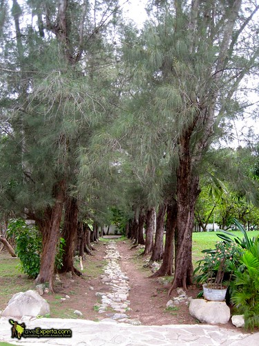 Hemingway's Farm, Cuba