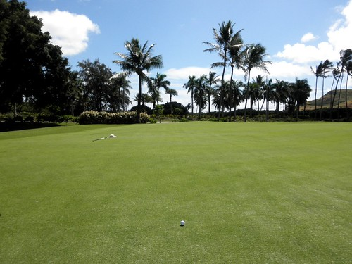 Turtle Bay Colf Course 156b