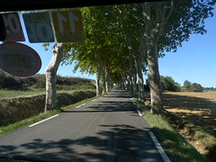 going south (ScaryLily) Tags: france september11 scarylily