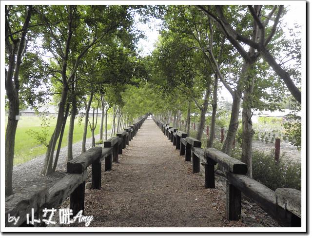 羅東林業中心P7262694