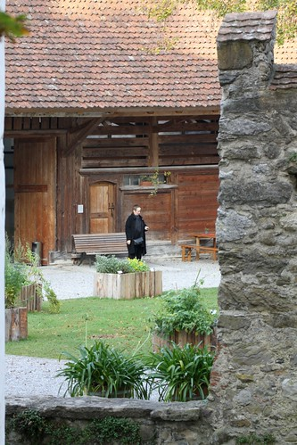 Blick in den Schlosshof von Hallwil / View into the castle yard of Hallwil