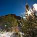 Snow in the Kolob Canyons