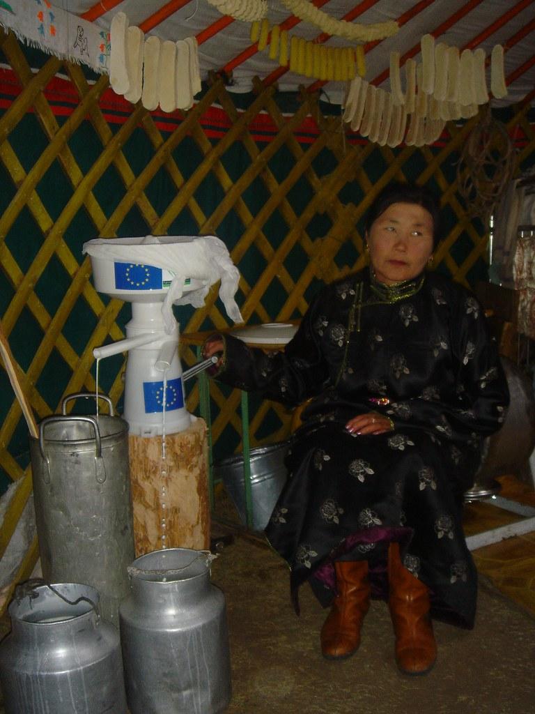 Fabrication de beurre en milieu traditionnel (yourte) : phase d'écrémage du lait, Sum de Onder-Ulaan (Bag de Belkhi), Arkhangaï, Mongolie