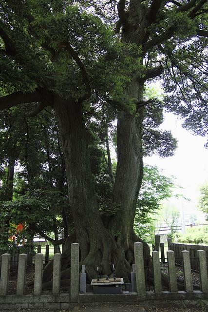 110521_124922_関ヶ原_西首塚
