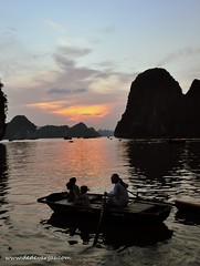 Halong Bay, Vietnam, Asia, wonder of the world. (Ded Vargas - Travel Writer) Tags: world sunset heritage del de landscape bay la asia long do sete paisaje unesco vietnam seven da asie southeast mundial mundo wonders halong nam siete indochina mondial patrimoine baie bucht landskap maravillas baha baia humanidad patrimonio maravilhas  sudeste mondiale humanidade   asiatico vietnan vnh  dhalong   vit h